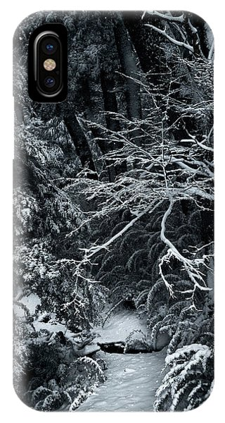 The Path To The Frozen Forest In The Argentine Patagonia IPhone Case