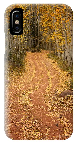 The Pathway To Fall IPhone Case