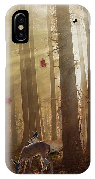 The Peace Of An Autumn Sunset IPhone Case