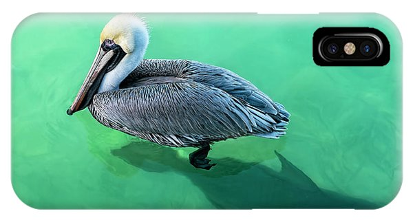The Pelican And The Shark IPhone Case