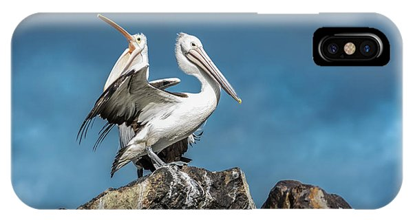 The Pelicans IPhone Case