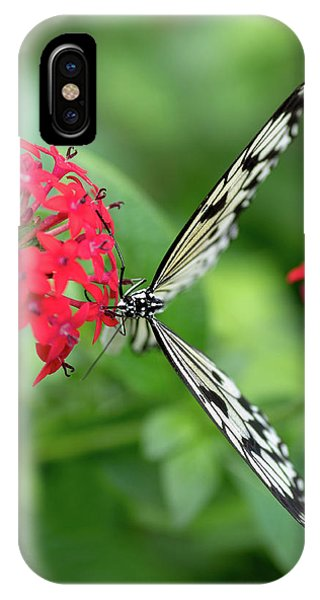 The Perfect Butterfly Land IPhone Case