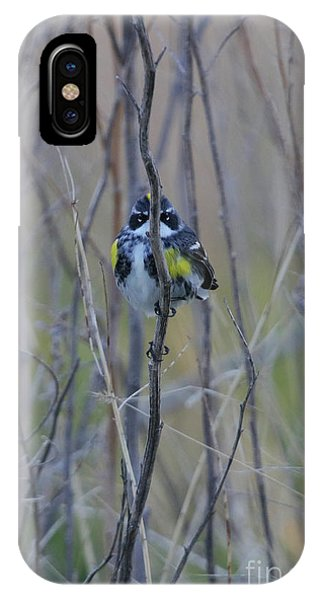 The Perfect Hiding Spot IPhone Case