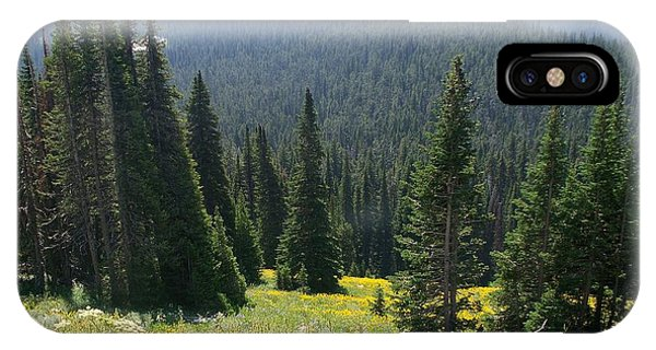 The Pine Trees IPhone Case