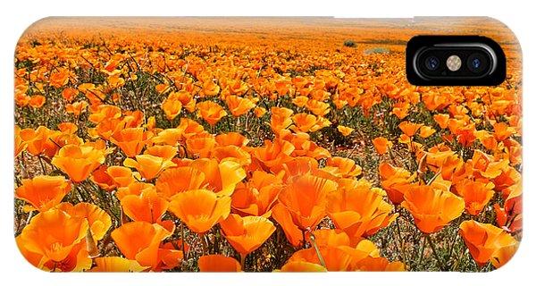 The Poppy Fields - Antelope Valley IPhone Case