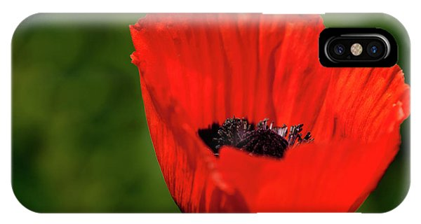The Poppy Next Door IPhone Case