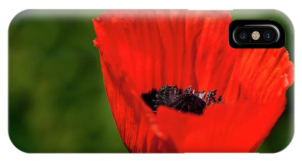 The Poppy Next Door IPhone Case