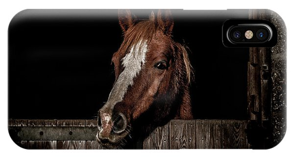 Equine iPhone Case - The Poser by Paul Neville