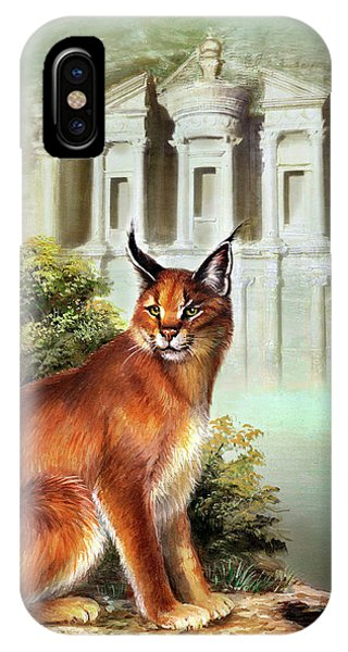 The Protector Of The City Of Petra IPhone Case