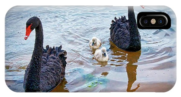The Protectors, Black Swans And Cygnets IPhone Case