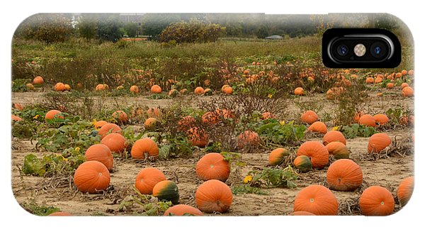 The Pumpkin Farm Two IPhone Case