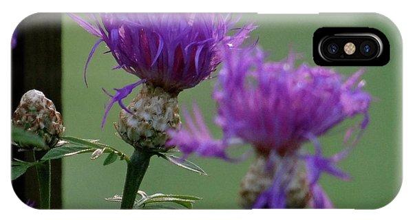 The Purple Bloom IPhone Case