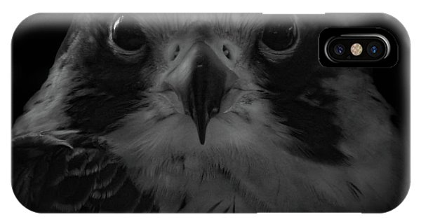The Raptors, No. 10 IPhone Case