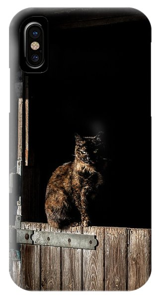 Yard iPhone Case - The Rat Catcher by Paul Neville