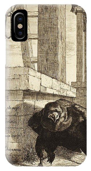 Raven iPhone Case - The Raven by Felix Bracquemond