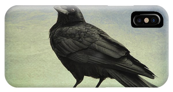 The Raven - 365-9 IPhone Case