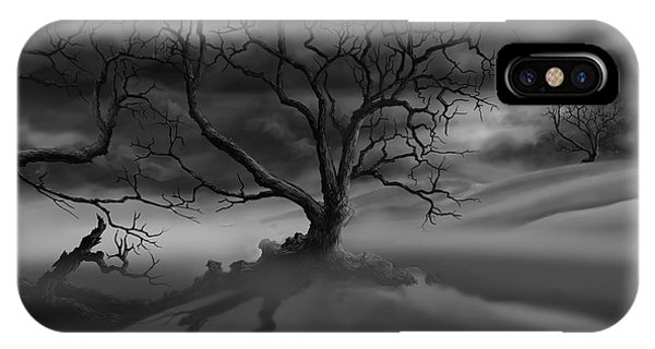 The Raven's Night IPhone Case