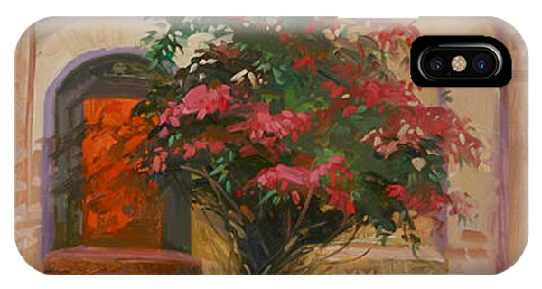 Betty Billups iPhone Case - The Red Door - Catalina Island by Betty Jean Billups