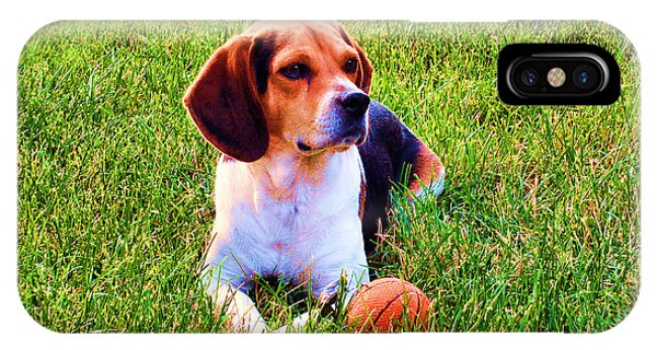 The Reserved Beagle IPhone Case