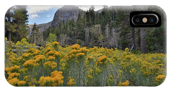The Road To Mt. Charleston Natural Area IPhone Case