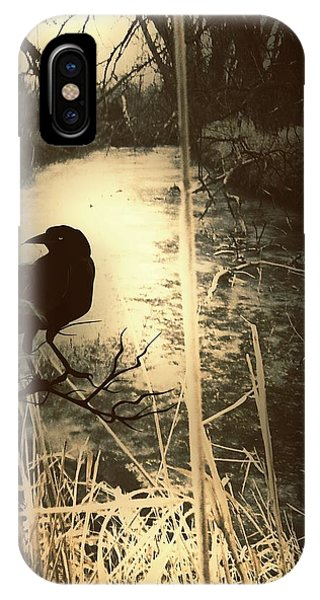 The Robin And The Wren Are Flown. Winter Crow IPhone Case