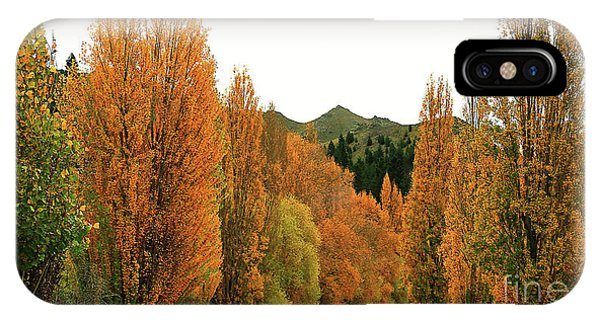 The Russet Tones Of Fall IPhone Case
