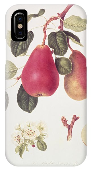 Scarlet iPhone Case - The Scarlet Beurree Pear, 1819  by William Hooker