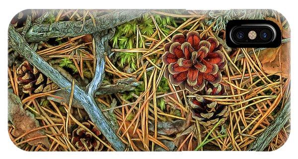 Salo iPhone Case - The Scent Of Pine Forest II by Veikko Suikkanen