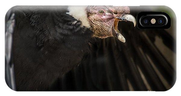 Condor iPhone Case - The Scream by Jamie Pham