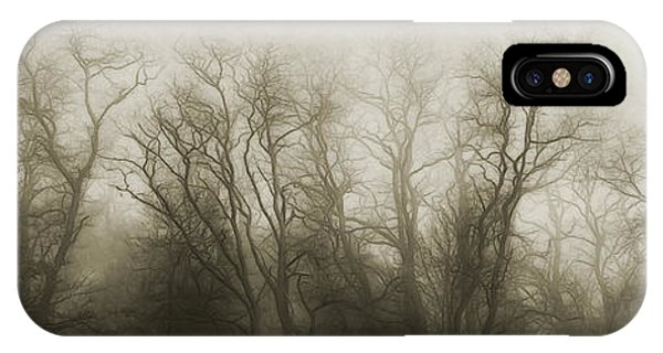 Treeline iPhone Case - The Secrets Of The Trees by Scott Norris