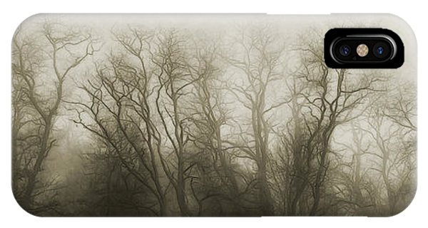 Fog Mist iPhone Case - The Secrets Of The Trees by Scott Norris