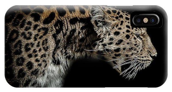 Leopard iPhone Case - The Seeker by Paul Neville