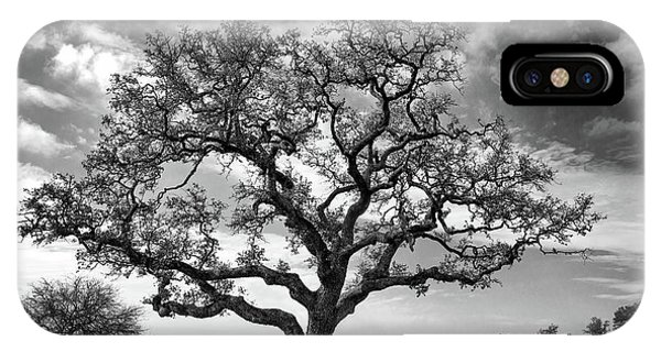 The Sentinel Bw IPhone Case
