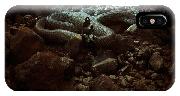 Serpent iPhone Case - The Serpent's Lair by Michal Karcz