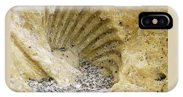 The Shell Fossil IPhone Case