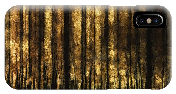 Amber iPhone Case - The Silent Woods by Scott Norris