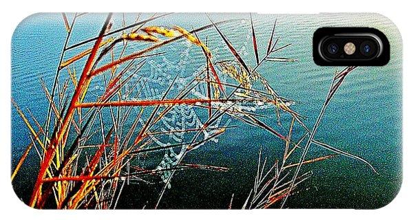iPhone Case - The Silk Web by Blair Stuart