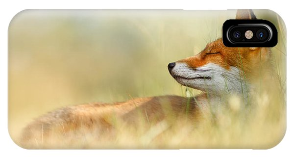 Fox iPhone Case - The Sleeping Beauty - Wild Red Fox by Roeselien Raimond