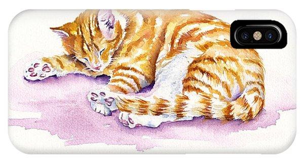 Cats iPhone Case - The Sleepy Kitten by Debra Hall