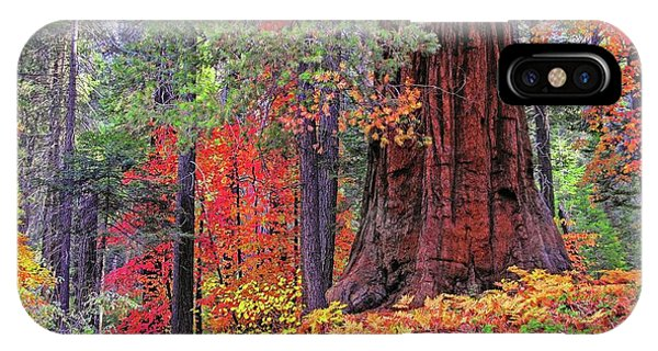 The Small And The Mighty IPhone Case