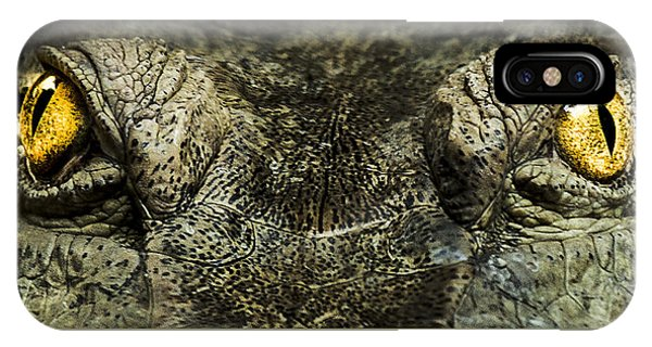 Crocodile iPhone Case - The Soul Searcher by Paul Neville
