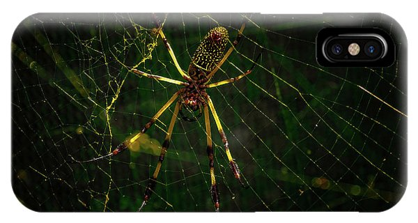 The Spider IPhone Case