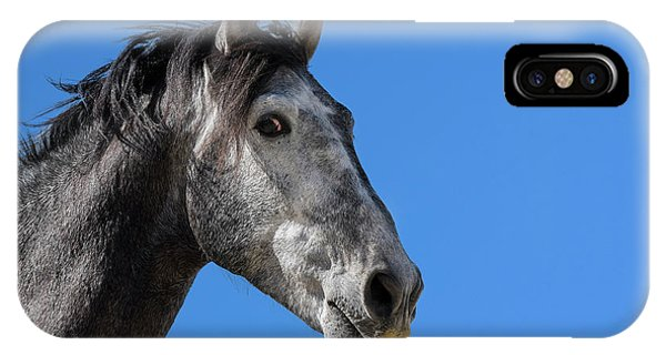 The Stallion IPhone Case