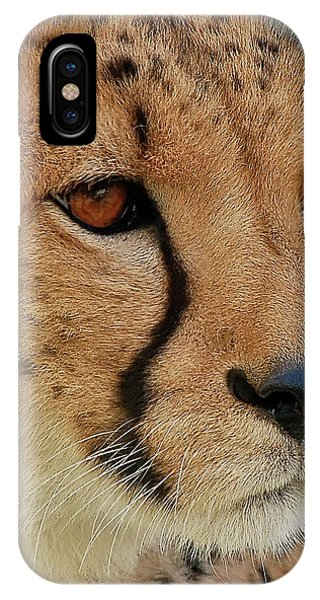 The Stare IPhone Case