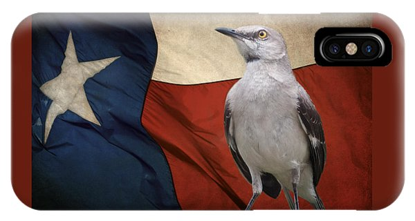 The State Bird Of Texas IPhone Case