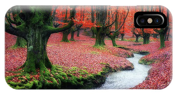 The Stream Of Life IPhone Case