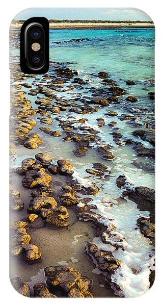 The Stromatolite Family Enjoying Its 1277500000000th Sunset IPhone Case