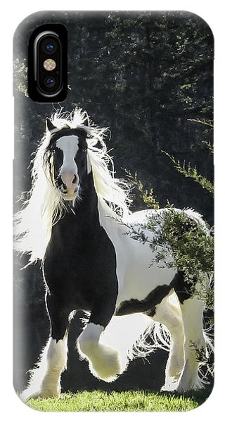 The Stunning Horse IPhone Case
