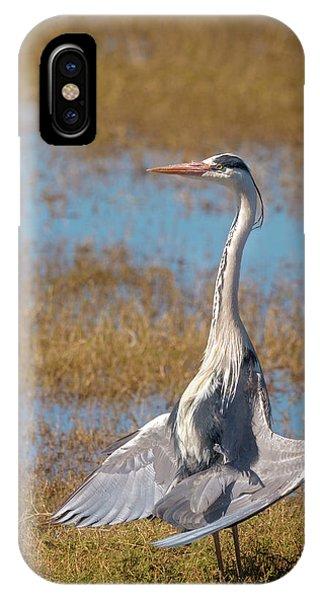 The Sunbather IPhone Case