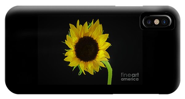 The Sunflower IPhone Case